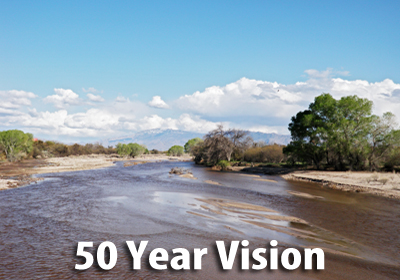 50-year Vision for flowing Rivers