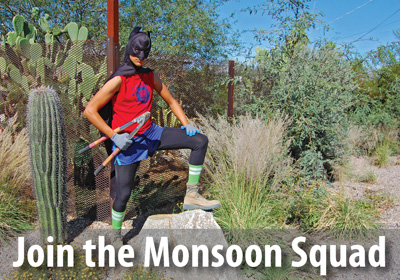 Join the Monsoon Squad and be the front line of defense for Tucson's public rain gardens.