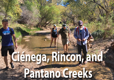 Cienega, Rincon Creek, and Pantano Streamsheds