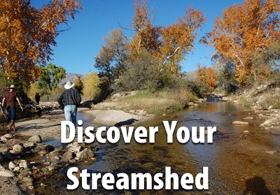 Discover your streamshed.