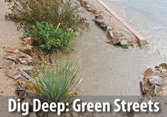 Learn more about the benefits and how to implement green infrastructure.