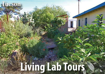 Enjoy a free tour of our Living Lab and Learning Center on the 2nd Saturday of every month.