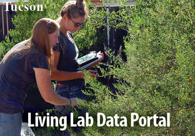 Access WMG's Living Lab and Learning Center Data Portal for weather data, rainwater supply and demand, and more