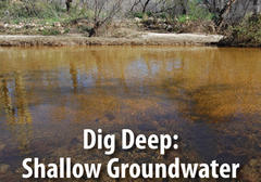 Learn what shallow groundwater is and why it is important to our riparian ecosystems.