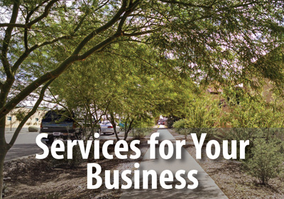Let us transform your business landscape into a lush and welcoming environment.