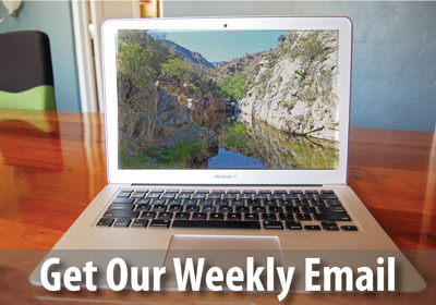Sign up to receive our weekly email bulletins and special action alerts.