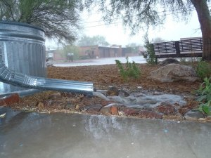 Passive rainwater harvesting features benefiting a front yard.