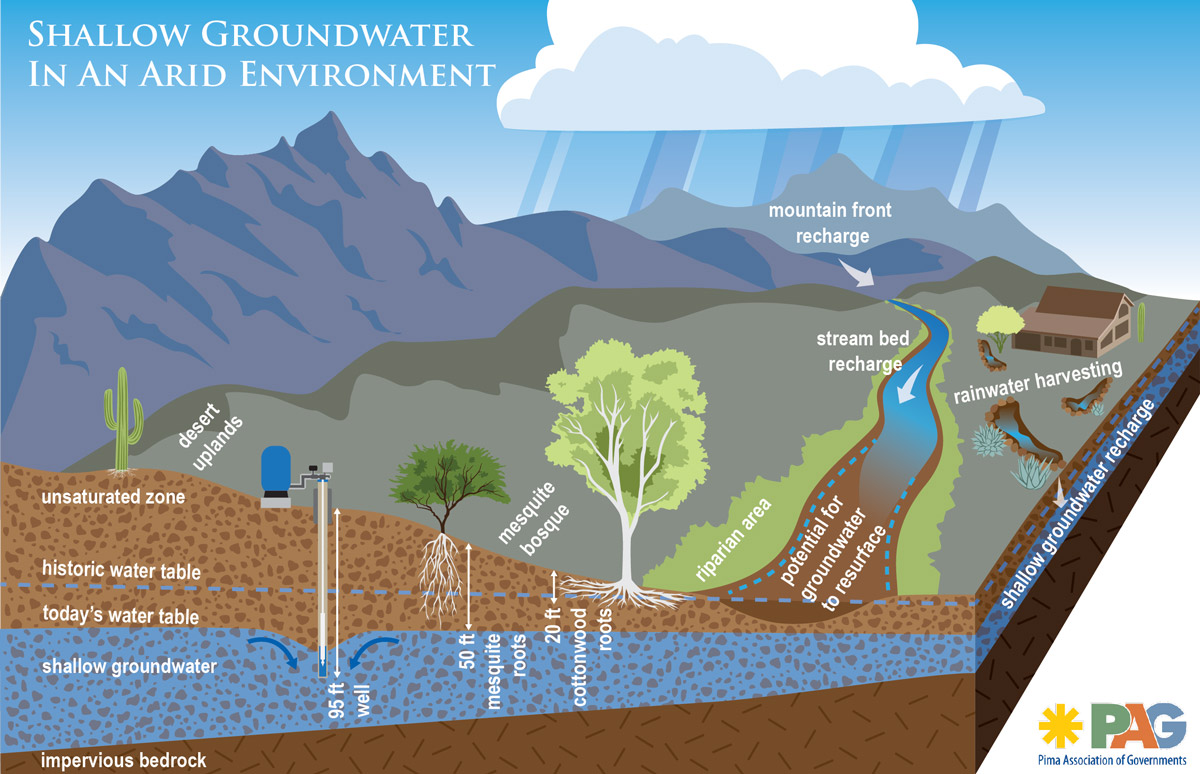 Graphic: What is happening to shallow groundwater at Sabino and Tanque Verde