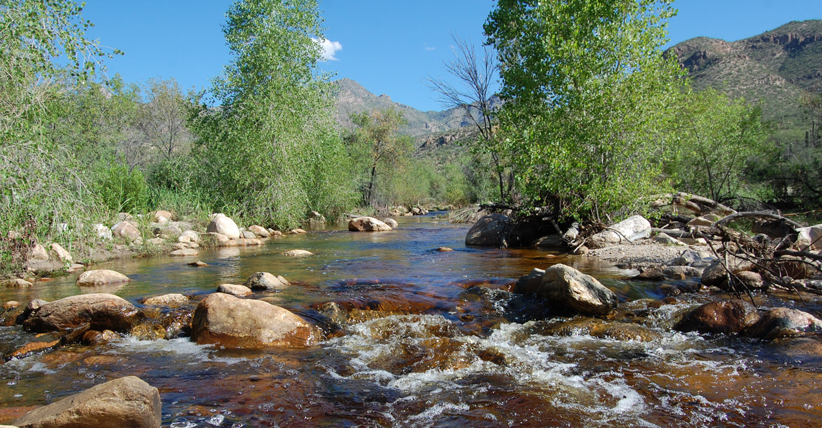 With strong community effort, we can restore year-round flow to Sabino Creek.