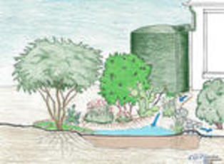 Rainwater harvesting, with passive and active systems.