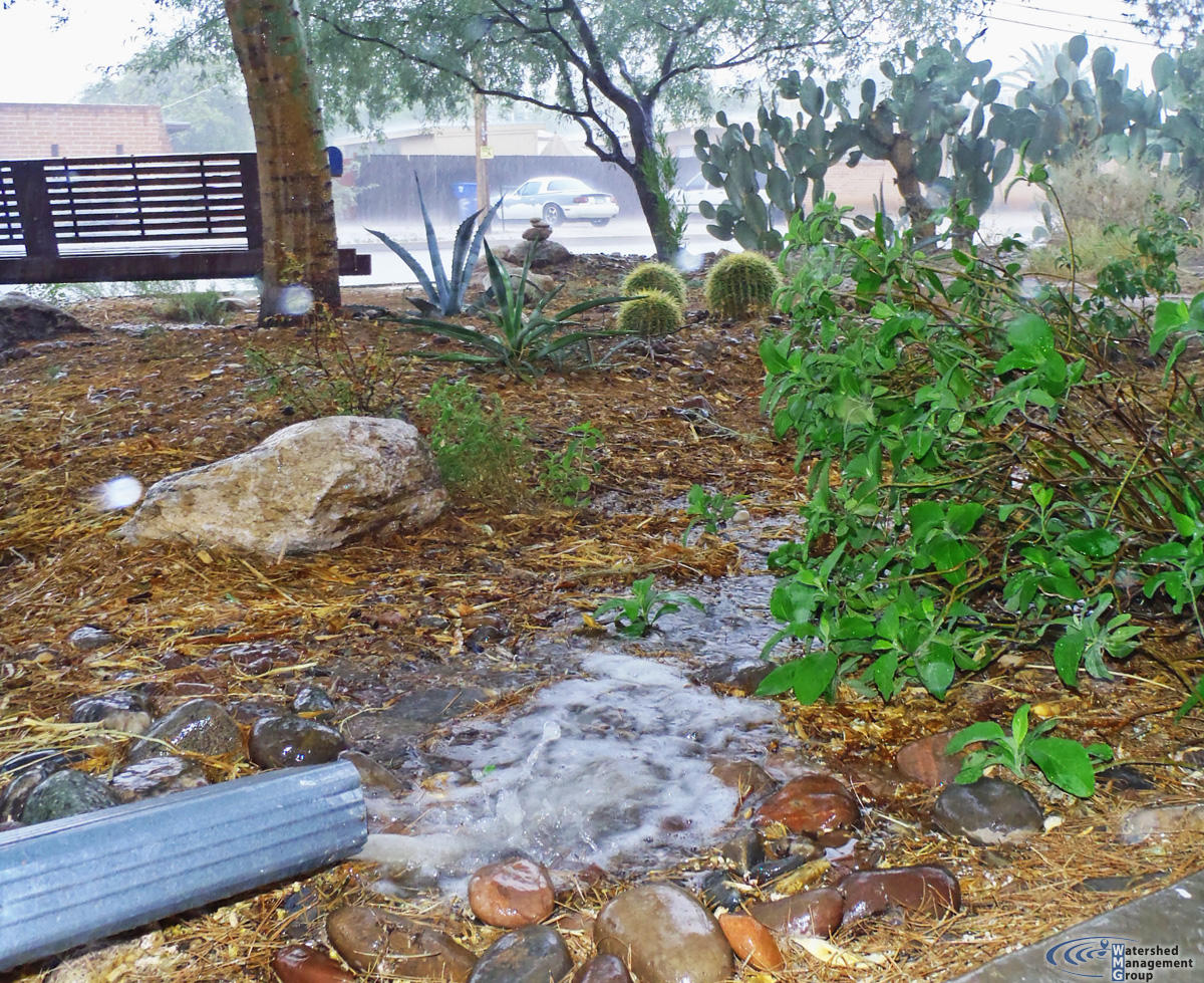 Rain Garden Watershed Management Group