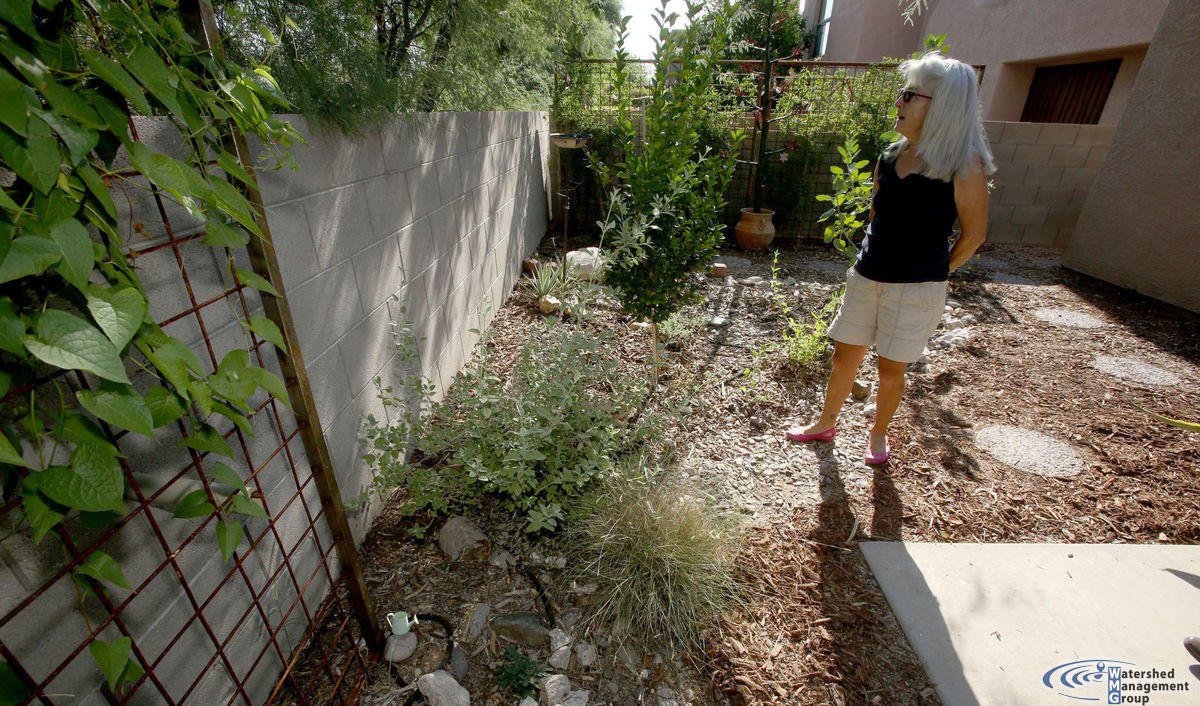 three tucson fall garden tours for your october must do list