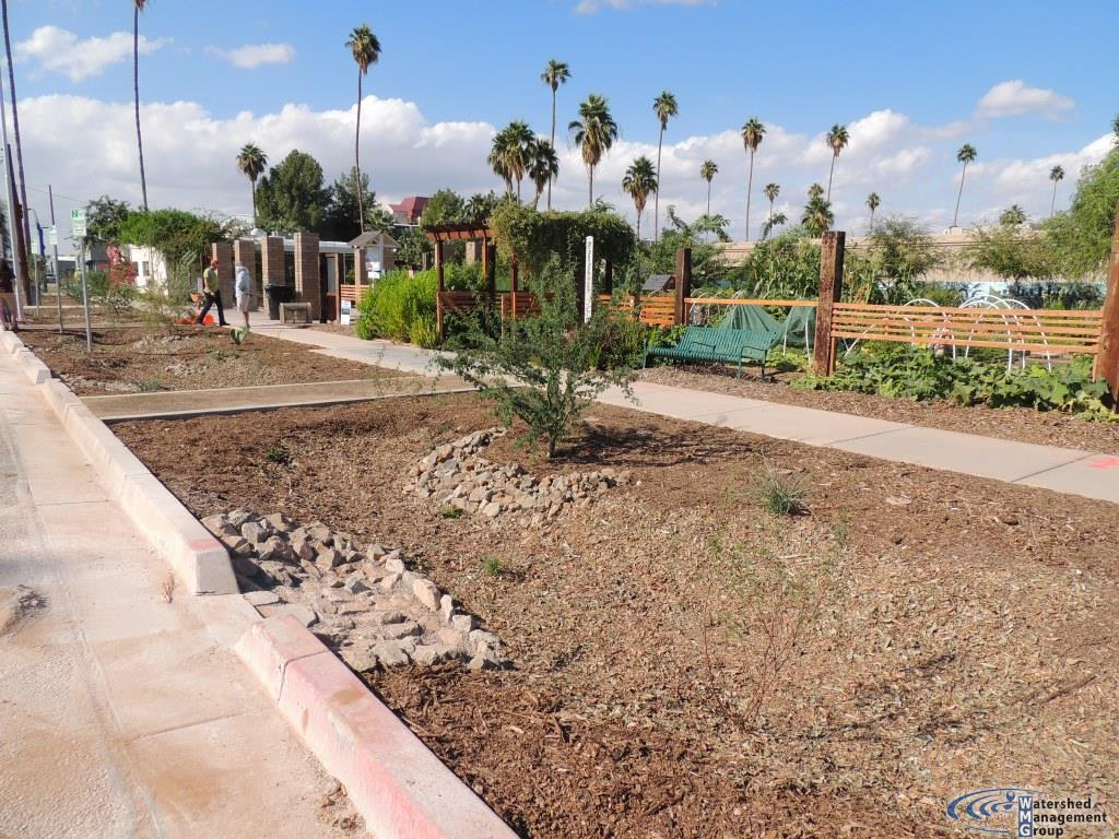 Mesa Urban Garden | Watershed Management Group