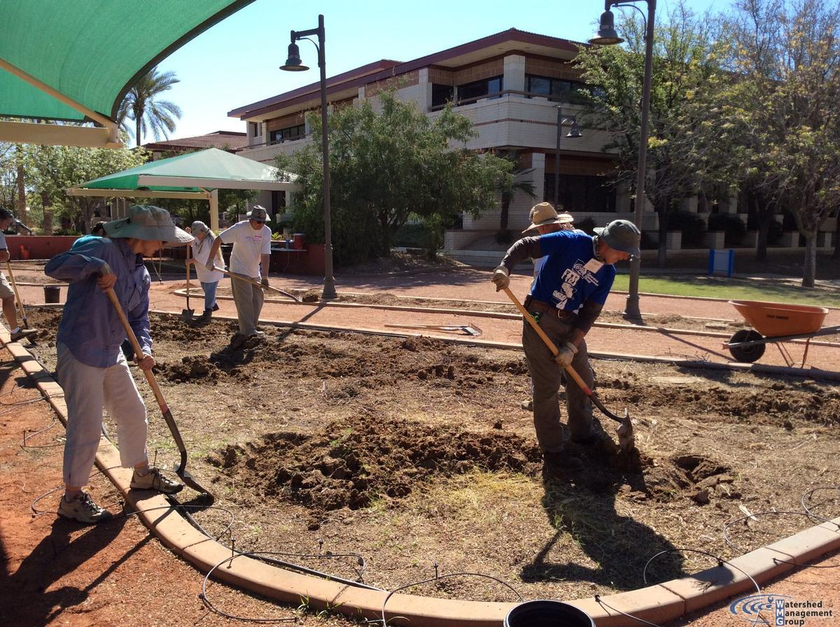 City of Peoria City Hall Edible Garden   Watershed Management Group