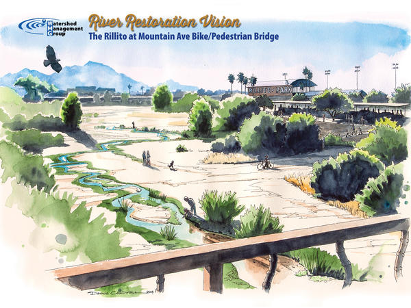 Illustration of WMG's 50-year vision for the Rillito River