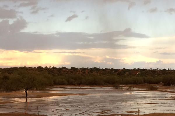Pima County and WMG work together to sink stormwater into the CDO floodplain.