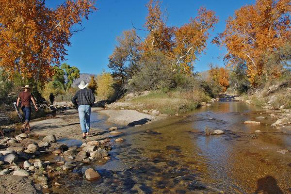 Assessing flow in Sabino creek - Fall 2015