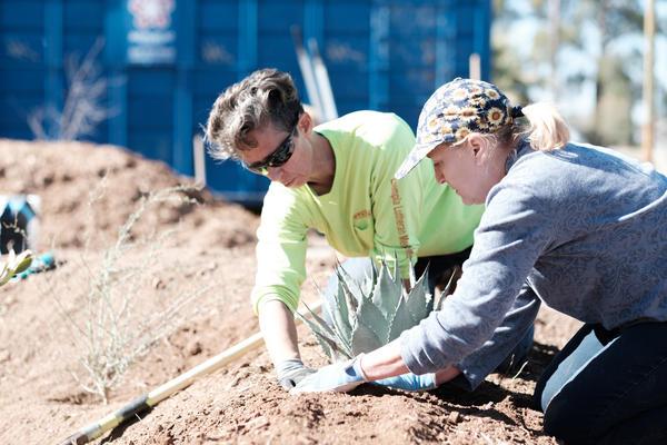 Volunteers needed for restoration workshops.