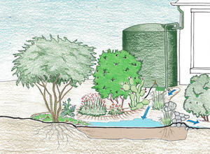 Example of active and passive rainwater harvesting