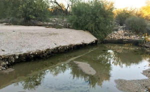 Failing grade control structure along Sabino Creek preventing a headcut from downcutting up the channel.