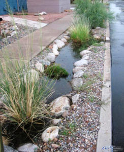 Curb cuts help reduce street flooding.