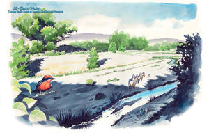 Restored vision of Tanque Verde Creek at confluence with Agua Caliente Creek