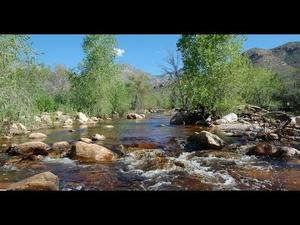 Embedded thumbnail for Flow365: Sabino and Tanque Verde Creeks