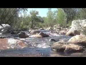 Embedded thumbnail for Restoring Hope: Get Your Feet Wet in Shallow Groundwater