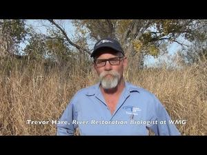 Embedded thumbnail for Welcome to the Lower Tanque Verde Streamshed