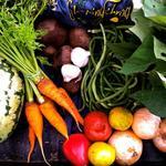 Beautiful bounty of local, organic produce from Sleeping Frog Farms.