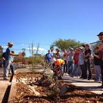 2013: WMG offers Design Build services for commercial landscapes and create a green infrastructure demonstration site at the Tucson Association of Realtors office.