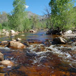 2015: WMG launches campaign to restore flow to Sabino Creek