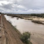 Cañada Del Oro (CDO) Wash: 1st Avenue; Matthew Ford