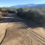 Cañada Del Oro (CDO) Wash: La Cañada Road; Angela Greynolds