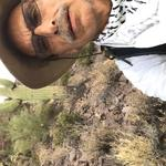 """This morning I cleared the western facing slope of a small peak in Tucson Mountain Park. I worked from 5:45 to 9:30 AM."" - David R,"