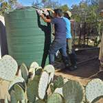 Rain tanks are the perfect way to provide year-round supplemental irrigation.