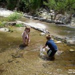 Watershed Management Group Sabino Creek Living Waters gallery photo