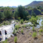 Tucsonans enjoying the waters flowing in the Santa Cruz River during the river release on Monday, June 24. Photo: Jamie Manser/Watershed Management Group