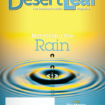 The Desert Leaf, June 2016 - Harvesting the Rain