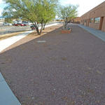 Continental Elementary School water harvesting project