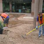 FedEx volunteers shaping the basins