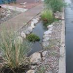 Rain basins collect water