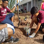 Phase 1 - Students got involved to help with the planting