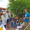 Building Healthy Desert Soils