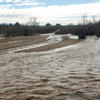Agua Caliente Creek