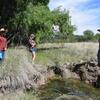Cienega Creek Restoration Workshop